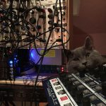 CatSynth Pic: Radikal Technologies Spectralis and Eurorack