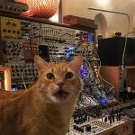 CatSynth Pic: Rufus Meowing with Modular