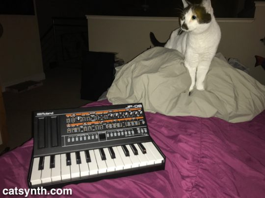 Sam Sam and the Roland JP-08