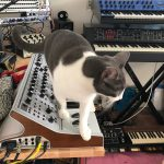 CatSynth Pic: Gracie, Moog, PPG Wave, and More
