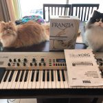 CatSynth Pic: Cats, KingKorg, and White Wine