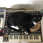 CatSynth Pic: Dave, microKORG, and Mini Kaoss Pad