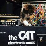 CatSynth Cat on Octave CAT
