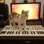 CatSynth Pic: Pearl and Virus TI