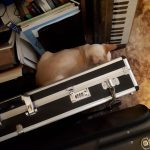 CatSynth Pic: Musical Instrument Den (Yamaha Reface DX)