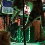 CatSynth Video: Flying Techno Kitties