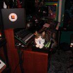 CatSynth Pic: Studio Cat (Nord, Roland, Akai MPC)