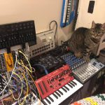 CatSynth Pic: Zoe, Modular, and Roland SH-01