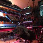CatSynth Pic: Miko in the Studio