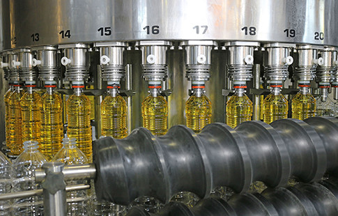 olive oil bottles in processing machine