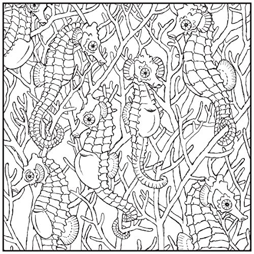 ADULT COLORING BOOK Sea Life Stress Relieving Designs Includes Bonus Relaxation CD Color With Music