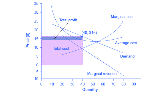 Watch How to Determine Your Profit Margin video
