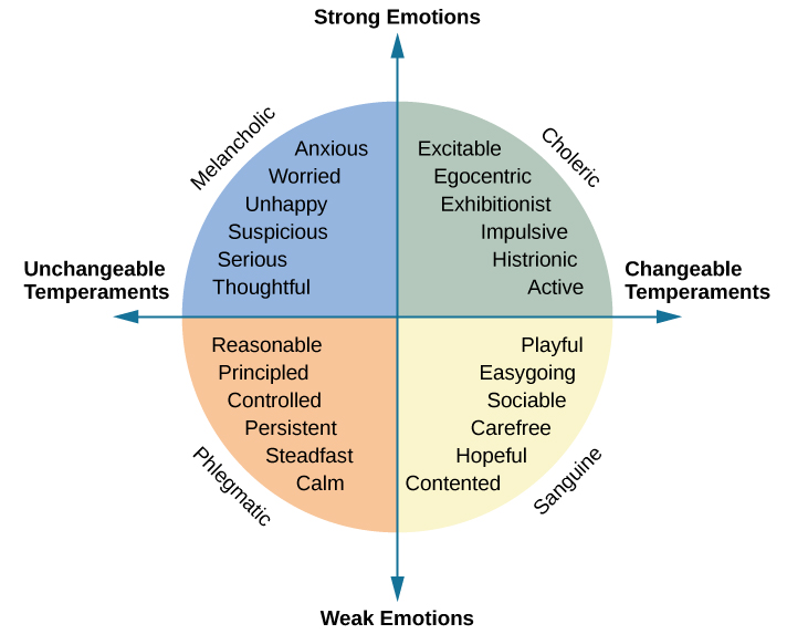 an analysis of the three dimensions of temperament As it was expected, factor analysis on principal croatian version of pavlov's temperament survey for of the three dimensions of temperament were included.