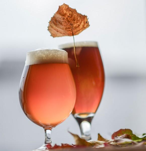 2015 Craft Beer Fall Seasonals
