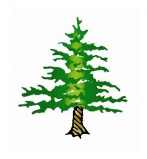 twisted_tree_copy