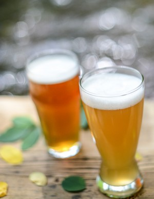 Flavors of Fall: Craft Beer's Latest Seasonal Releases