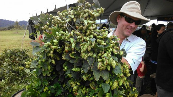 Blue Mountain Brewery hops