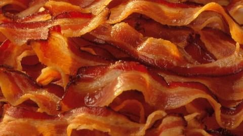 baconbaconbacon-480x270