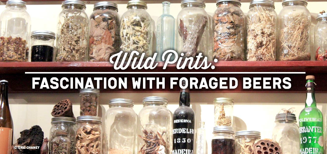 Wild-Pints--Fascination-with-Foraged-Beers_slider