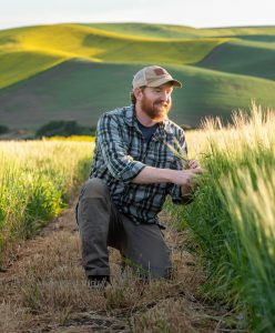Kevin Murphy kneeling and looking at barley plots.