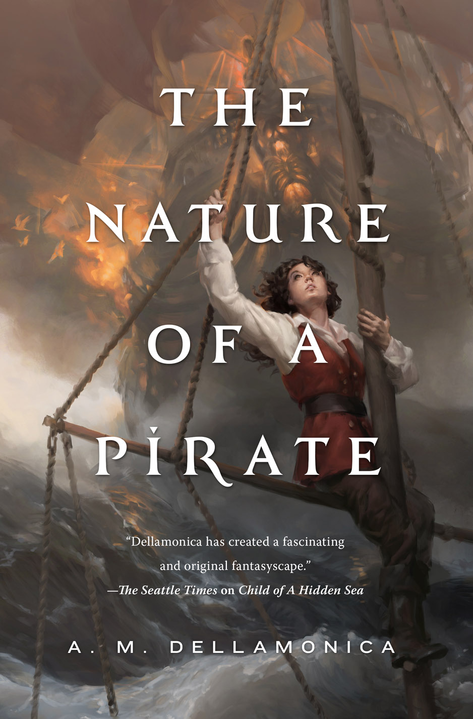 The nature of a pirate high res