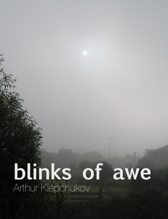 Book cover   blinks of awe