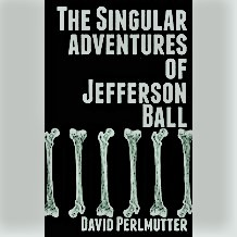 Singular adventures book cover