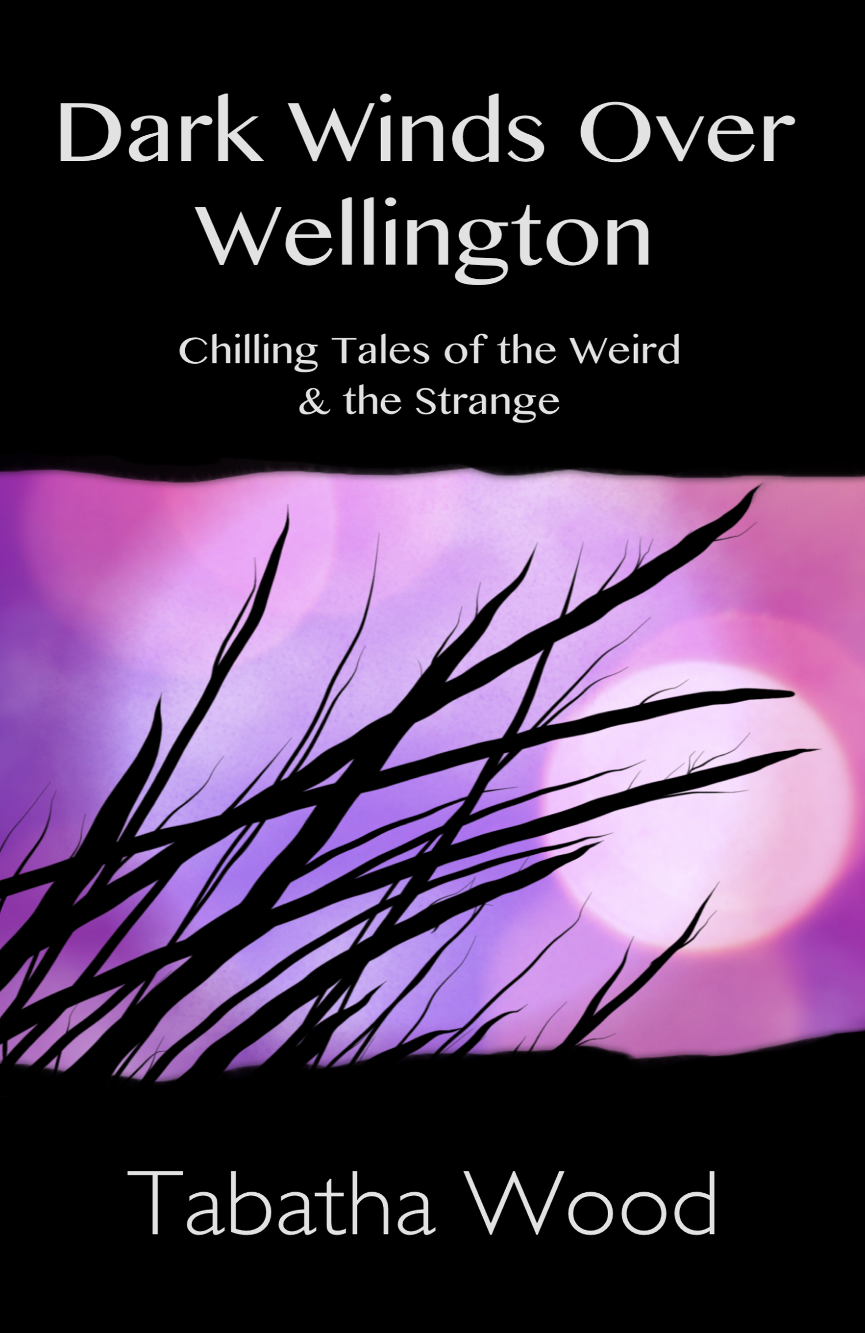 Dark winds over wellington paperback cover