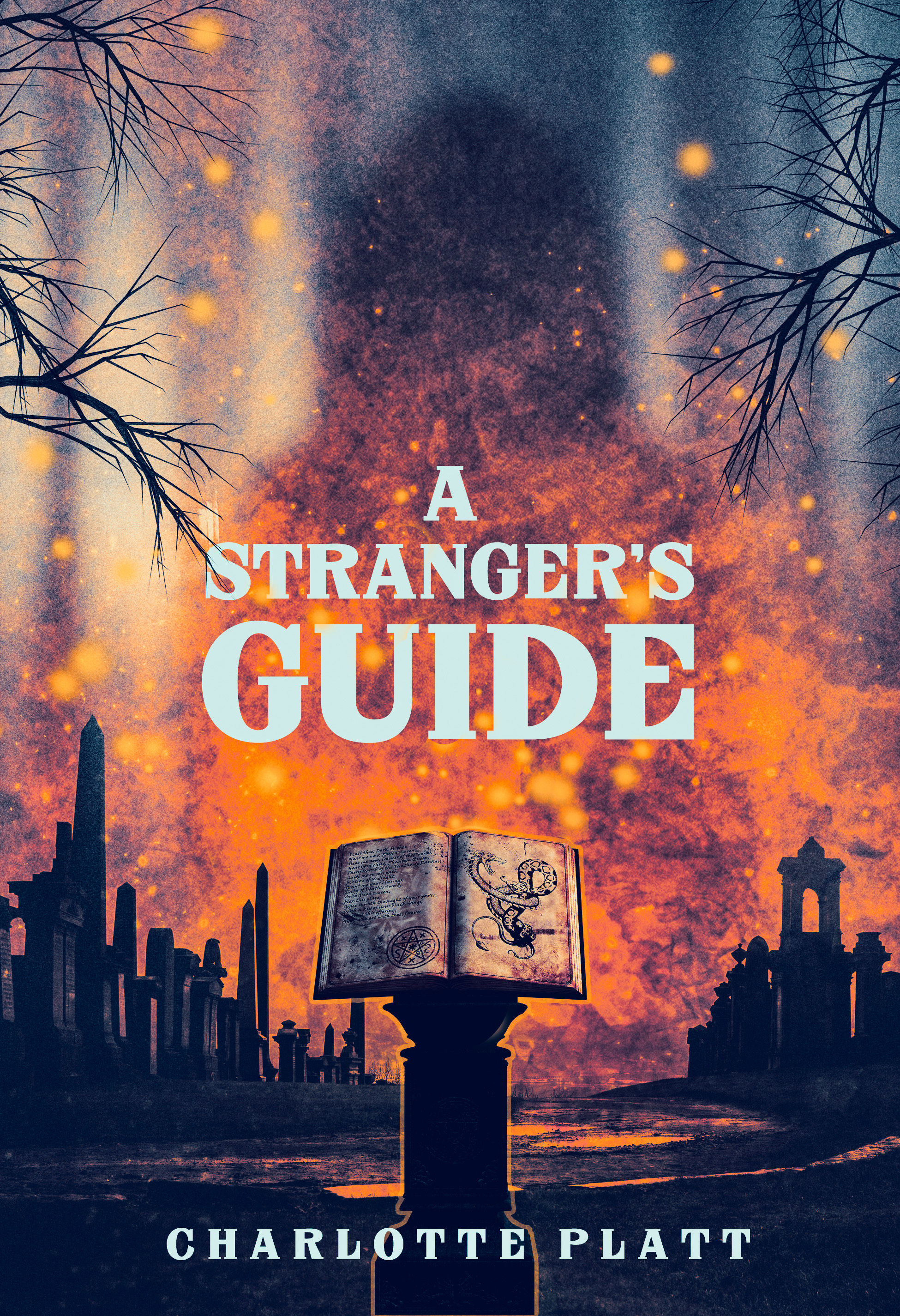 A stranger's guide   digital