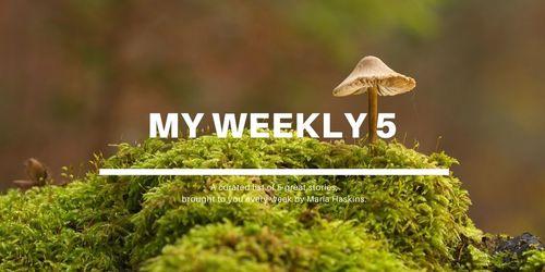 Weekly5 13