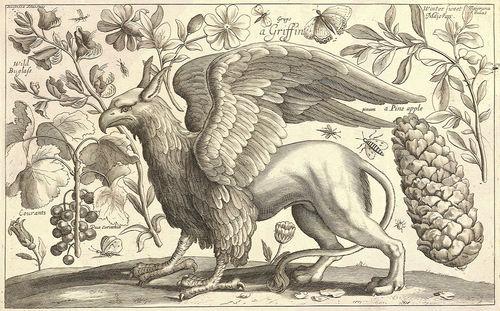Eagle's beak cover 1
