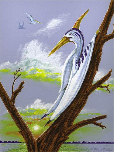 Pterosaur on tree