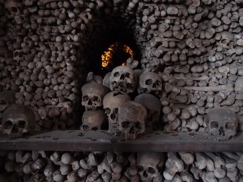 Gate of bones