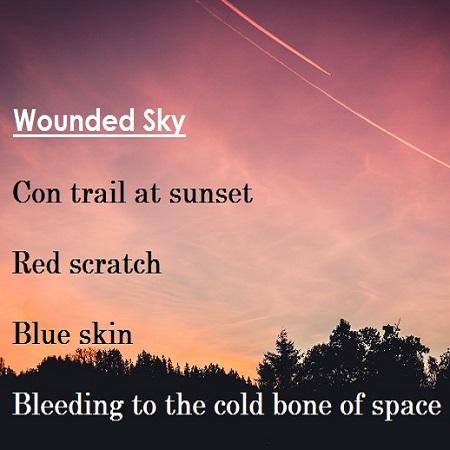 Woundedsky mccormick