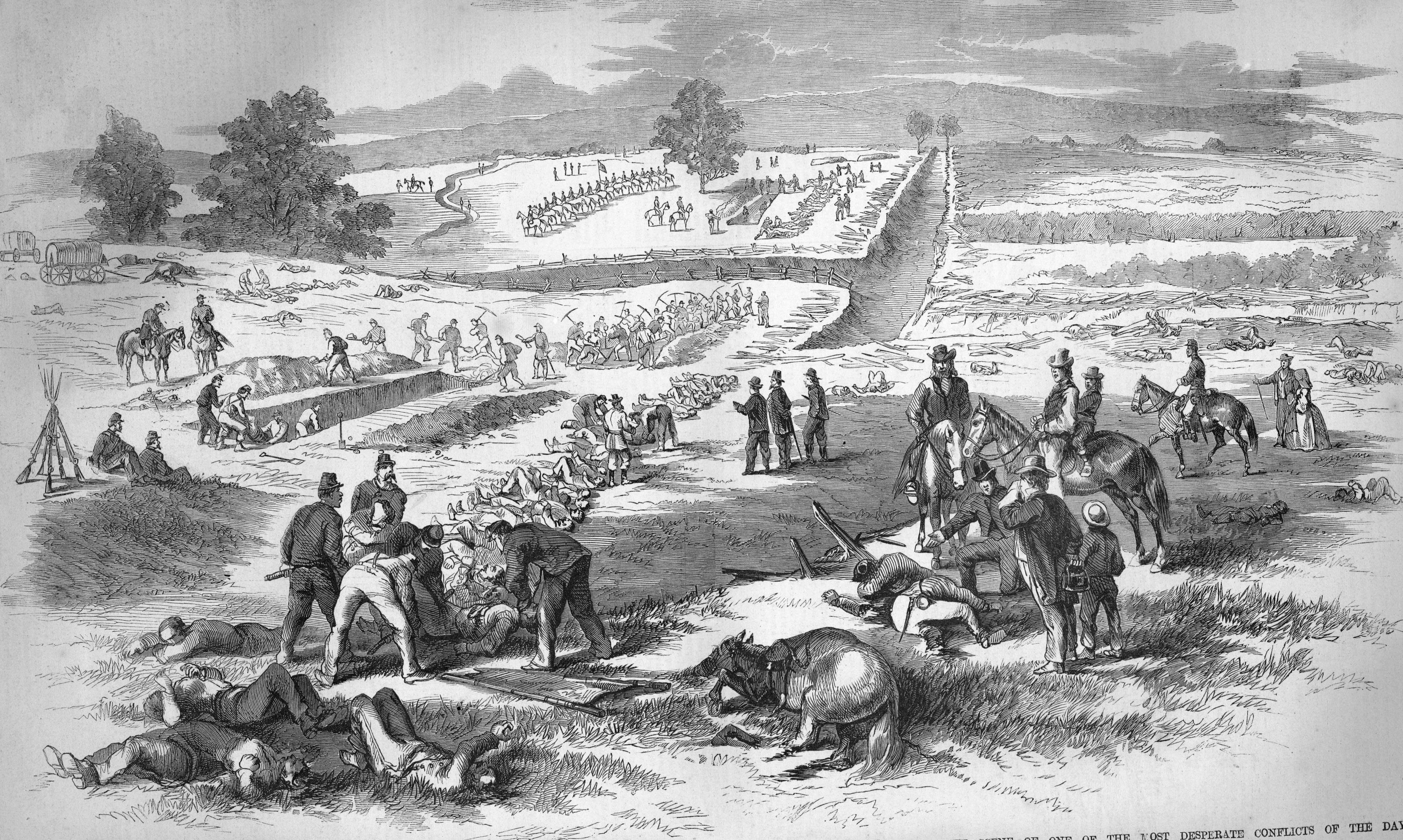 Burying union dead on the antietam battlefield 1862 civil war