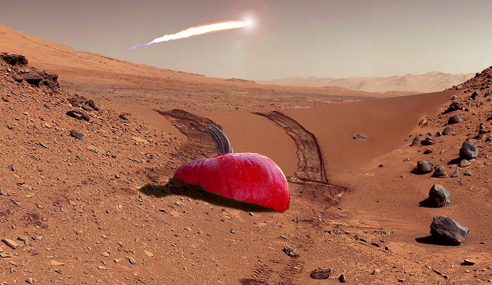 Mars gourd 1000