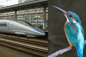 What happens when you combine a kingfisher and a bullet train? Innovation.