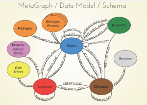 Integrating All of Biology into a Public Neo4j Database
