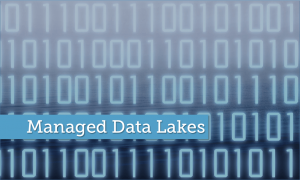 Data Modeling in a Jargon-filled World – Managed Data Lakes
