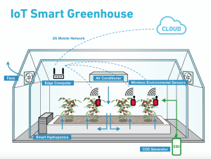 AWS IoT-Driven Precision Agriculture