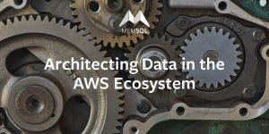 Architecting Data in the AWS Ecosystem