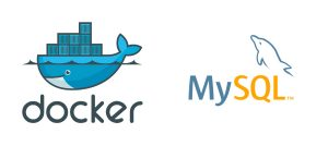 Configuring MySQL in a Docker Container