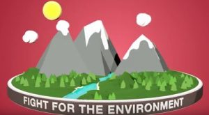 3 Nonprofits to Know on World Environment Day