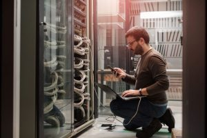 Managed WordPress Hosting vs Shared Hosting: Which is the Best Fit For Your Hosting Needs?