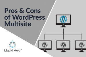 Pros and Cons of WordPress Multisite