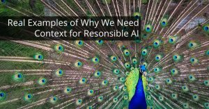 Real Examples of Why We Need Context for Responsible AI
