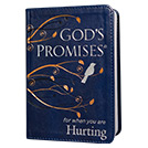 God's Promises for When You Are Hurting