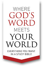 Where God's Word Meets Your World