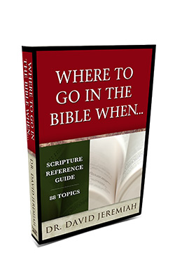 Where to Go in the Bible When…
