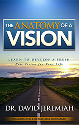 Anatomy of a Vision